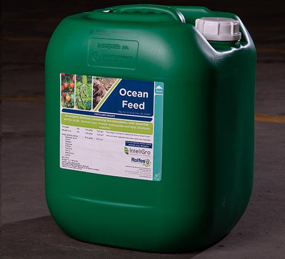 Ocean Feed