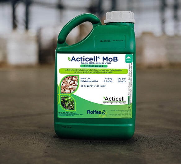 Acticell MoB
